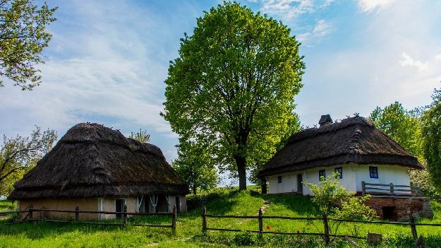 Музей Пирогово (фото 2)