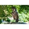 скульптура интеллигент зимородок