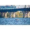 Мост Патона (фото 5)